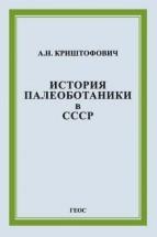 Криштофович